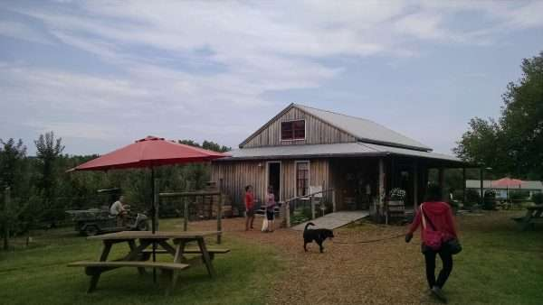 Charlottesville Ranch Farm